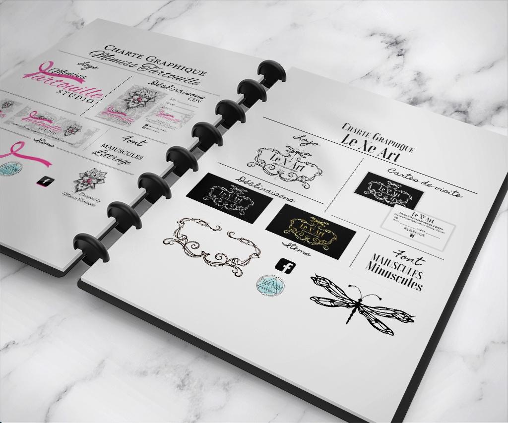 charte graphique agde - graphiste - pika com freelancer